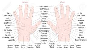 Hand Chart Hand Reflexology Zone Massage Chart With Areas And Names Of The