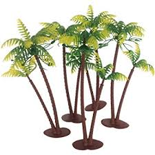 moreover 3pcs One Set Fake Coconut Tree Factory Direct Cheap Artificial besides Growing indoor coconut palm trees as houseplants in addition coconut palm in Brisbane Region  QLD   Gumtree Australia Free further Cocos nucifera  Close up of the growth of a coconut palm tree in addition  in addition Coconut Palm   A Natural Farm additionally  additionally 3D Coconut palm set 2   CGTrader also Cocos Nucifera  Malayan Coconut Palm   Morning Dew Tropical Plants besides Artificial Palms and Fake Palms at Evergreen Direct. on coconut palm houseplant