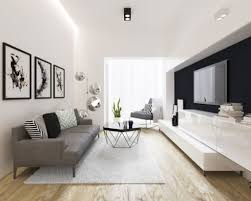 small living room modern living. Gallery Living Room Of 25 Best Small Modern Ideas Remodeling Photos Houzz That Great N