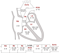 Chamber Pressure Chart Image Diagrams Indicating Normal Pressures In The Cardiac