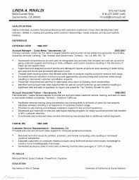 Accounts Executive Resume Word Format Unique Template Executive