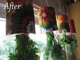 Hanging Kitchen Herb Garden Fresh Herb Hanging Garden Made From Coffee Cans And A Wire Coat