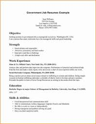 Resume Sample Online Resume Examples For Federal Jobs Resumes
