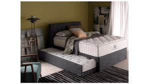 Fresco of Pull Out Bed Frame Selections