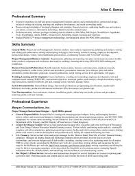 Resume Professional Summary Examples Customer Service Examples Of