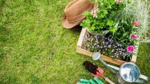 basic gardening tools. set of gardening tools in lush garden basic s