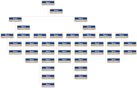 Corporation Org Chart Template