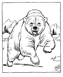 Small Picture Free Printable Bear Coloring Pages For Kids