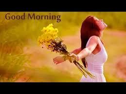 Good Morning Whatsapp Status Love Video Hindi Download Hd Stunning Download Song Quotes
