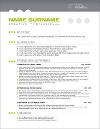 Appraiser Sample Resumes Custom Retail Recruiter Sample Resume Project Management Resume Examples