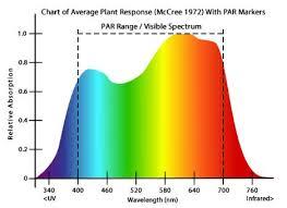 Full Spectrum Led Grow Lights
