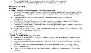 Cna Resumes Examples Examples Of Resumes Resume Summary Resume ...