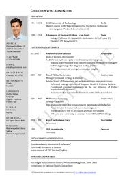 Examples Of Resumes Minimalist Cv Resume Template Job Application