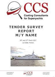 tender survey tender survey report