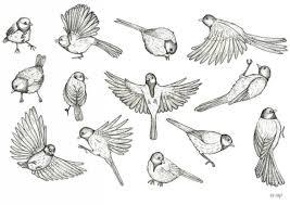bird drawing tumblr flying. Beautiful Flying Flying Bird Drawing  Gallery Intended Tumblr K