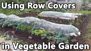 using row covers in vegetable garden fleece enviromesh veggiemesh insect and bird netting
