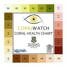 Coral Health Chart