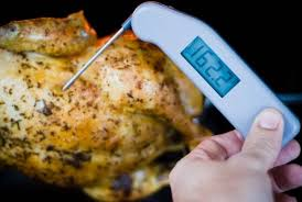 Thermapen Review Grilling Companion