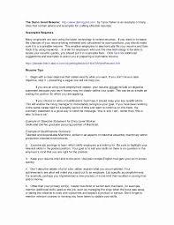 Us It Recruiter Resume Sample Best Of Resume Skills Summary Examples