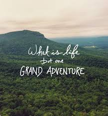 Quotes On Adventure Gorgeous 48 Adventure Quotes Nature Pinterest Captions Inspirational