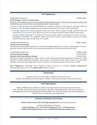 Professional Resume Examples By Gayle Howard Top Margin Executive Cvs