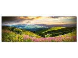 Wandbild Berge Wiese Blumen Tal Natur Landschaft Wandbilder