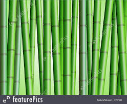 Texture Bamboo Forest Background 2 Illustration