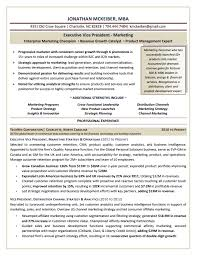 Vice President Marketing Resume Delectable Executive Resume Samples