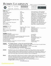 Elegant Resume Template Word 2007 Best Templates