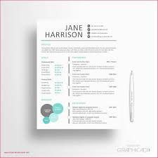 Teacher Resume Templates Examples Private Tutor Resume Luxury Math