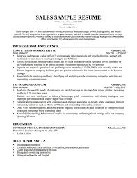 Additional Skills For Resume Grand Vision Small Business Owner