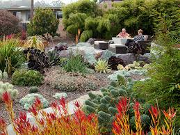 Small Picture Drought tolerant plants landscape design Drought Tolerant Plants