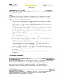 Resume Templates Abap Developer Objectives Example Sap Basis