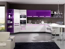 kitchen design purple and white. white and purple kitchen google search design y