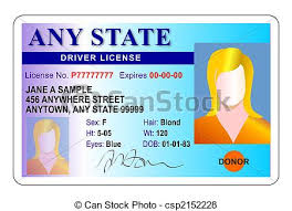 License Illustration White And Background License Blue Drivers Female Of