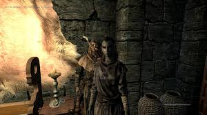 Housecarls and Followers can wear zazz at Skyrim Nexus mods and.