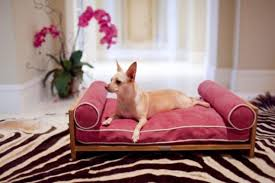 pets furniture. Have A Spoilt Pets? Here Is Deluxe, Effective And Comfortable Furniture For Them Pets
