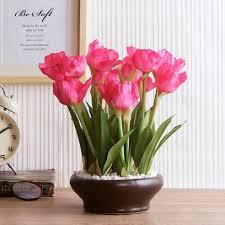 flower vases flower vases pots