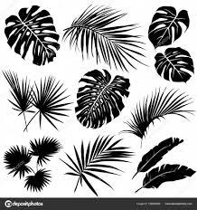 椰子の葉のシルエット ストックベクター Dianapryadieva 158894366