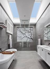 Bathroom skylight the block