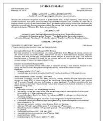 Account Director Resume Resume Account Director Resume 6