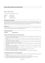 Resume Sample Formats Film Production Resume Template Builder doc sample  resume format for resume format for