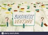 business+venture+meaning