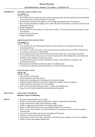 Events Executive Resume Samples Velvets Customer Care Examples