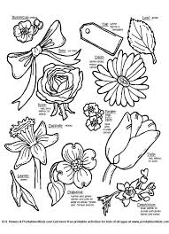 Learning number names has never been so easy using these printable charts. Botanical Flowers With Names Flower Coloring Pages Mothers Day Baskets Sunflower Coloring Pages