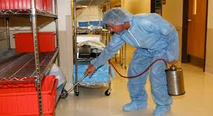 Image result for bed bug extermination