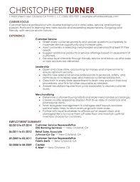 Resume Examples For Retail Sales Ellseefatih Com