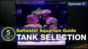 Saltwater Aquarium Lighting Guide See Why We Chose A 40 Gallon Breeder And 45 Gallon Red Sea E 170 Aio Saltwater Aquarium Setup