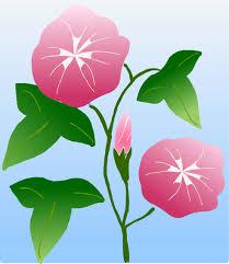 夏 夏景色夏の花 イラスト 無料