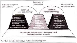 essay on nano biotechnology diagrams nano biotechnology a multidisciplinary integration